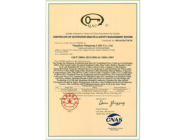 Occupation health Safety Management System Certificate